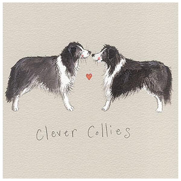 clever collies card