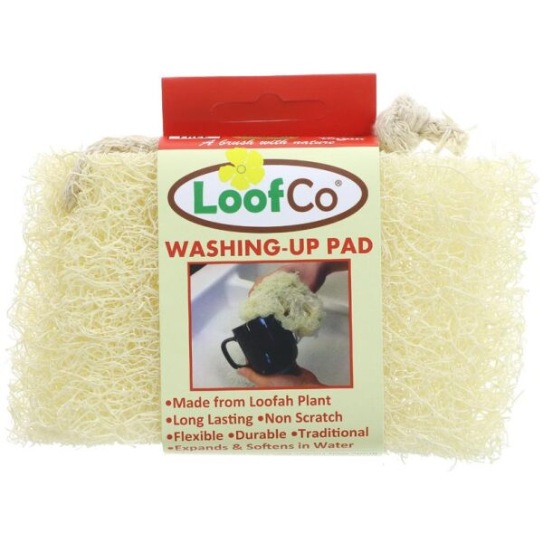natural washing up sponge